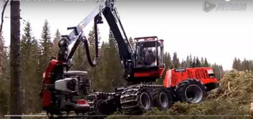德國人居然這樣砍樹,他們居然有辦法….. – 挖買尬影音台 - 20160728